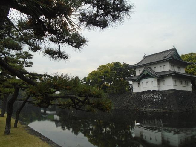Kyoto, Japan. 2015