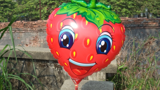 A summer ripe strawberry in Hue, 2014.